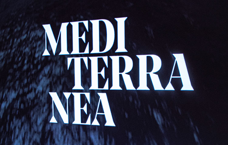 Mediterranea Exhibit